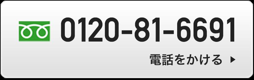 0120-81-6691